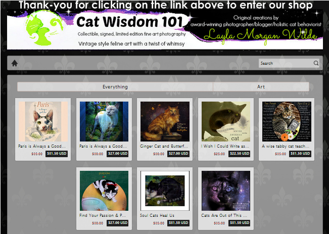 Cat Wisdom 101 Etsy shop