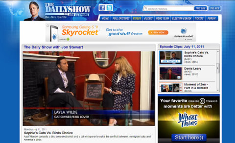 The Daily Show with Jon Stewart-Layla Morgan Wilde-cat behaviorist