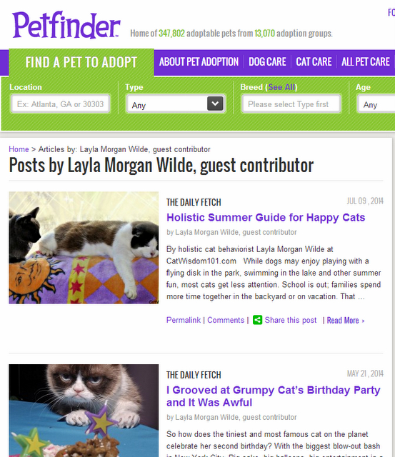 layla press petfinder