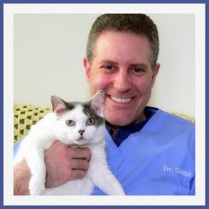 Dr. Richard Goldstein vet