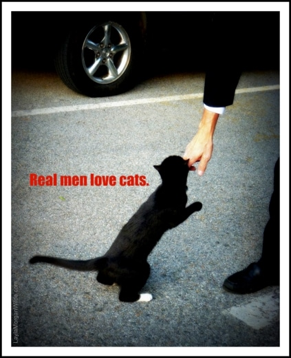 Cat-man-real men-love cats-quote
