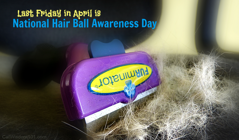 Furminator-national fur ball awareness day