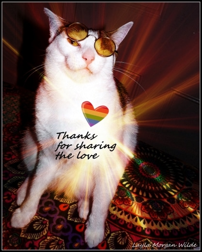 thanks-for-sharing-the-love-cat-odin