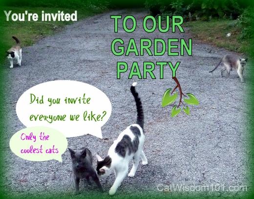 cats-garden-party-invitation Cat Saturday Garden Party