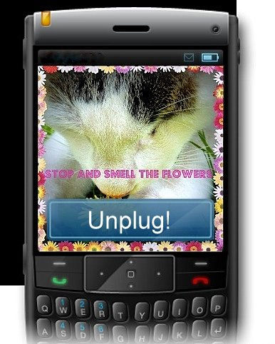 stop-smell-flowers-unplug-cat-cute-cell phone