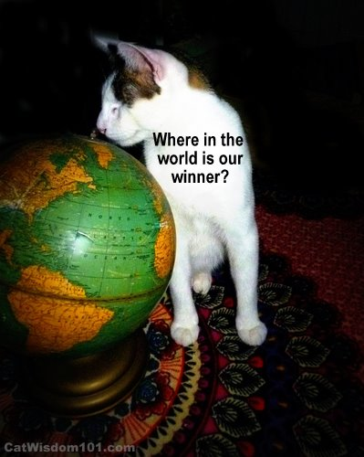 winner-cute-cat-globe-where in the world