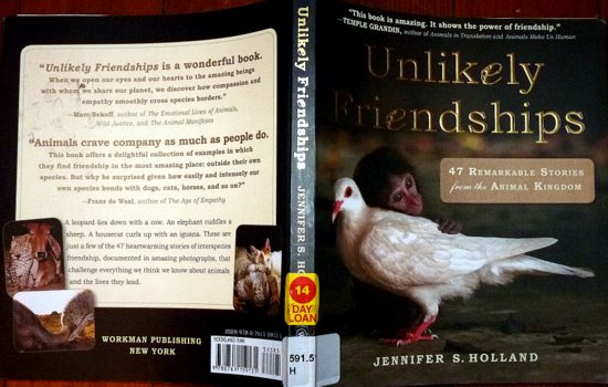 book -unlikely friendships