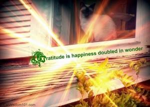 gratitude-happiness-cat-quote