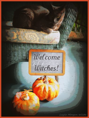 cat-art-welcome-witches-halloween