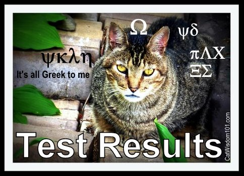 cat-vet-test-results