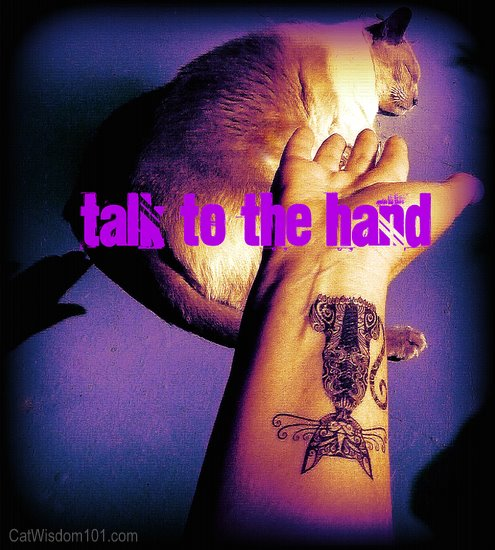 talk to the hand-cat-tattoo-cattoo