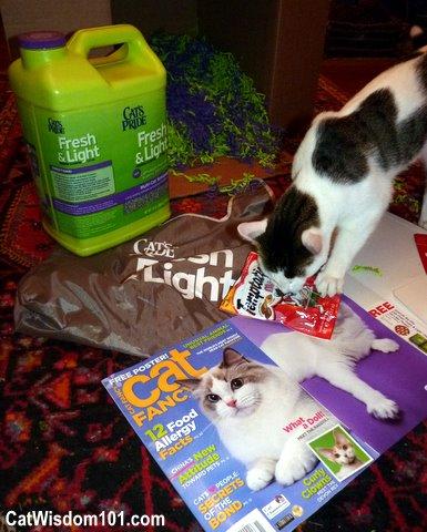 temptations treats-cat wisdom101.com