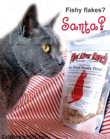 Flint River -Bonita treats-catwisdom 101.com-santa