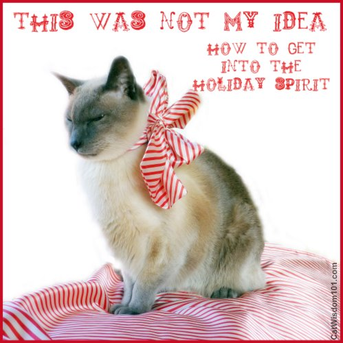 LOL cat-christmas spirit-siamese-cat wisdom 101.com