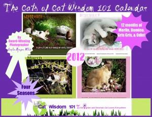 cat wisdom 101-calendar- front cover