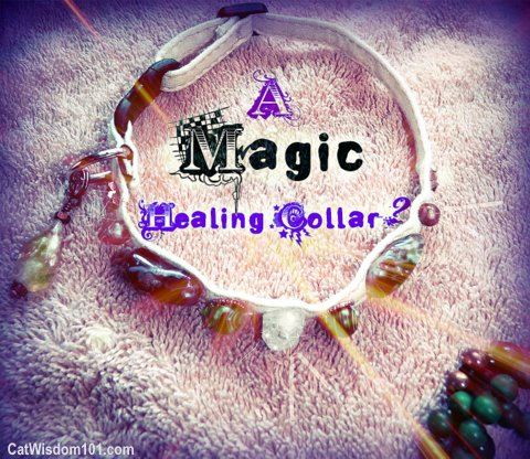 healing-magic-cat-pet collar-rockspirit designs-Fern Slack-catwisdom 101