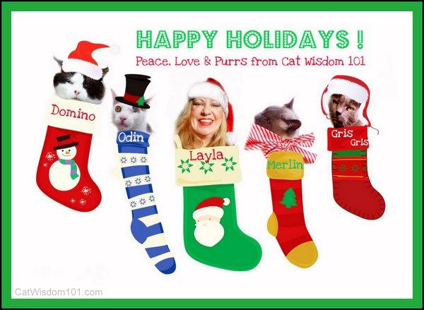 xmas-LOL cats-christmas cat card-cat wisdom 101-holidays-cat