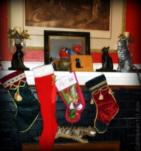 xmas-cat lady-stockings- cat wisdom 101