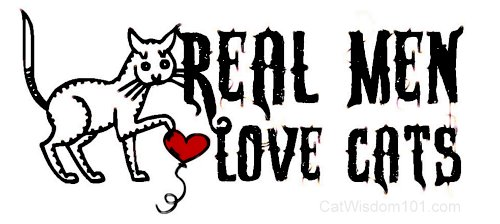 real men love cats-cat-wisdom 101