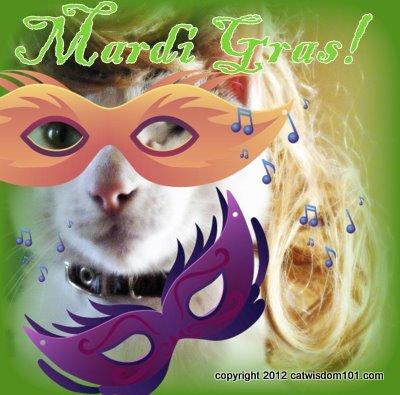 Mardi Gras-cat-cat wisdom 101