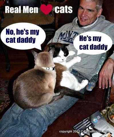 cat daddy-real men love cats-cat wisdom 101-LOL cats