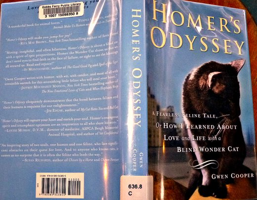 homer's odyssey-gwen-cooper-review-cat wisdom 101