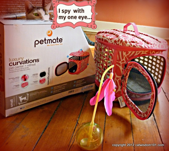 petmate.com-cats-pets- luxury carrier- cat wisdom101.com