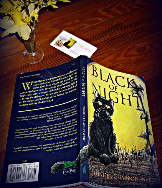 black of night-jennifer charron ward-black cats-satanic-sacrifice