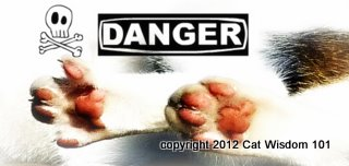 paws-poison-cats-danger-cat wisdom 101-vet 101