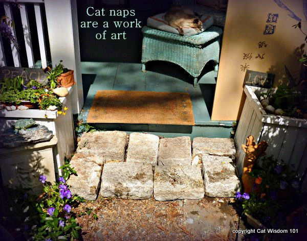 merlin-catnap-quote-art-garden-cat wisdom 101