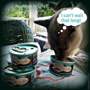 purina-fancy feast-cat wisdom 101-tastemaker