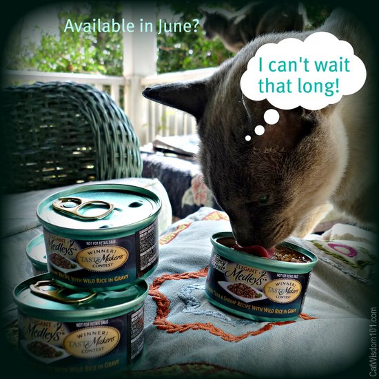 purina-fancy feast-cat wisdom 101-tastemaker