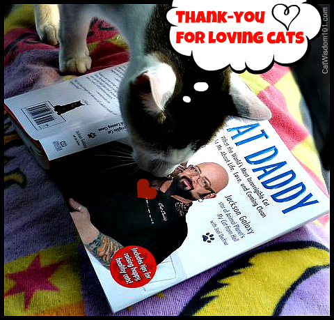 jackson-galaxy-cat daddy-odin-book-review-giveaway