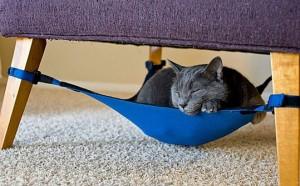kitty_cradle_2-300x186 Kitty Cradle Hammock Giveaway
