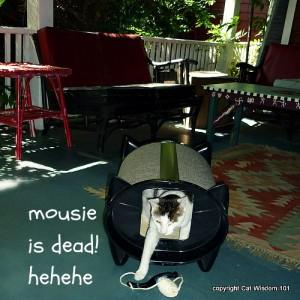 skratch-Kabin-cat-bed-sisal-mouse