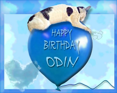 Cat-odin- birthday-balloon-zoolatry