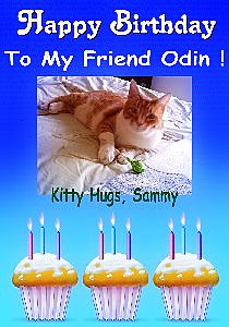 Odin-Birthday-cat-wisdom-sammy