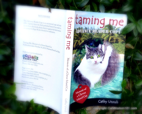 Taming Me-Cathy Unruh-ARC-Collage Books