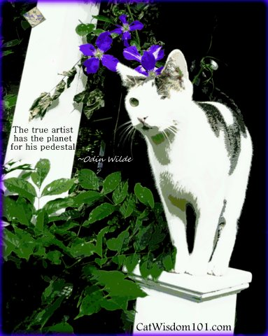 artist-quotes-cat-wisdom-art-planet-pedestal