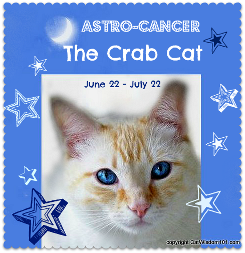 cancer-cat-astrology-mooncat-astro kitty-crab