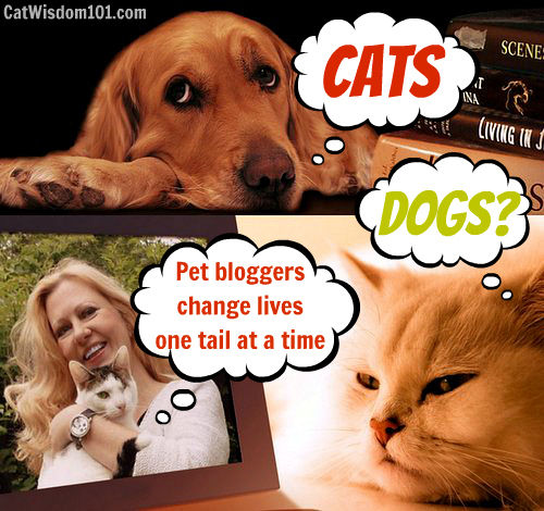 pettie-awards-blogpaws-pet-bloggers