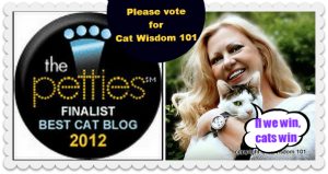 Layla Morgan Wilde-Pettie-awards-best-cat-blog