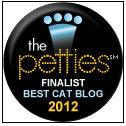 Pettie-Award-pet-Best-Cat-Blog-finalist