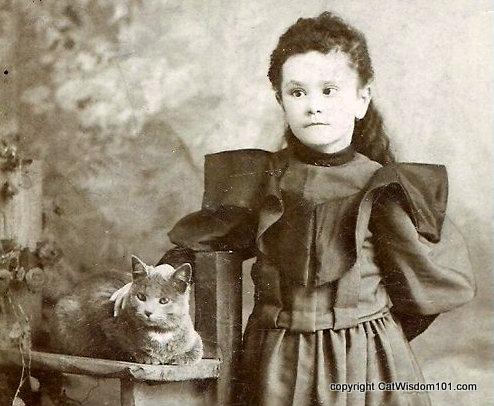 antique-photo-cat-girl-victorian