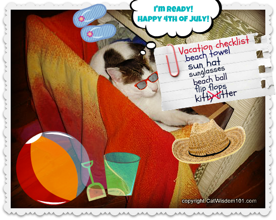 beach-towel-cat-LOL-vacation-July 4th