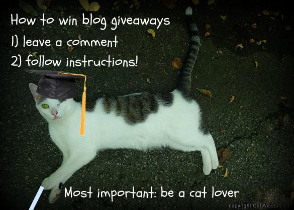 class-tutorial-blog-giveaway-cats-winning