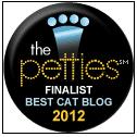 petties-pet blogger-awards-cat wisdom 101-best -cat blog