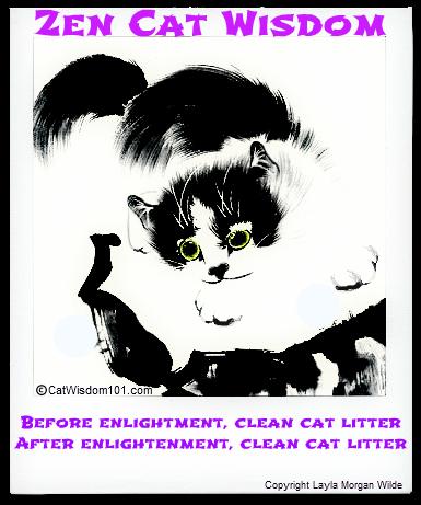 zen-cat-quote-enlightenment-litter