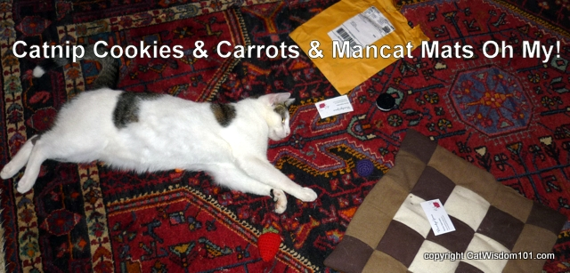 catnip-cookies & carrots & mancat mats, Oh My! cats