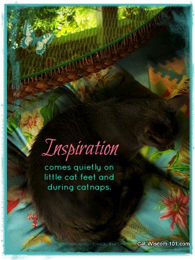 gris gris-cat-quote-inspiration